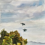 """Palm Springs Crows, Watercolor on Paper, 7"""" x 7"""" 2021"""