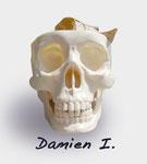 Damien First