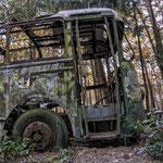Bus in 't Bos