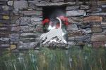 Ticino 2011 Acryl auf Leinwand (verkauft)
