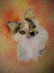 Chiwawa Zick Zack 2016 Acryl auf Papier 30 x 25 cm (verkauft)