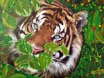Tiger 2013 Collage auf Malkarton