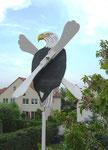 BELYWIND Seeadler