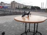 Птицы в центре Москвы