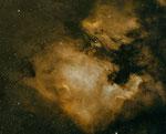 Nordamerika und Pelikan Nebel, Atik 490EXM, Test mit den Nikon ED 180mm IS,