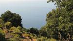 Seaview, Gavuragili
