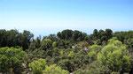Sea view, Saribelen