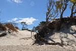in der Naehe von Punta del Este