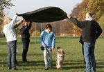 Der Wäller ist ein sportlicher und leicht erziehbarer Familienhund. Er soll in jeder Lebenslage ein angenehmer und flexibler Begleiter sein und auch in turbulenten Situationen gelassen bleiben.
