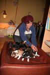 Jana bettet die Kleinen um, um die Wurfkiste für die Nacht zu säubern.