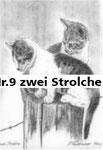Nr.9 zwei Strolche