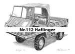 Nr.112 Haflinger