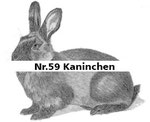 Nr.59 Kaninchen