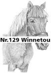 Nr.129 Winnetou