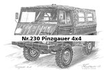 Nr.230 Pinzgauer 4x4