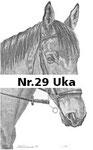 Nr.29 Uka