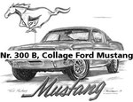 Nr. 300 B, Collage Ford Mustang