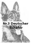 Nr.3 Deutscher Schäfer