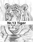 Nr.13 Tiger