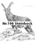 Nr.196 Steinbock