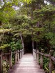 Rapaura Watergarten