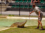 Steve Irwins Australia Zoo