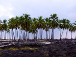 Pu'uhonua o Honaunau National Historical Park, Big Island, Hawaii, USA