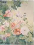 tuin, aquarel 46 x 60 cm