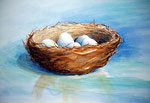 nestje, aquarel/pakpapier 25,5 x 38,5 cm