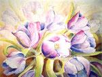 paarse tulpen, aquarel 46 x 62 cm