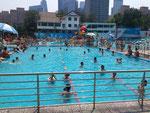 ココが唯一まともに泳げるプール。20mぐらいかな~。