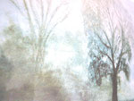 Nebel, Aquarell, ca. DIN A 4, Barbara Rank, 150 Euro