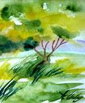 Natur I, Aquarell, ca. DIN A 4, Vivian Wieling, 150 Euro