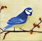 Blaumeise, Leinwand, 20 x 20 cm
