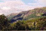 le train du fer de Narvik à l'assaut de la montagne