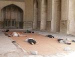 sieste dans un iwam de la mosquée du vendredi