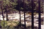 la rivière Nes