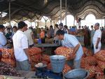 le marché aux oignons au bazar de Tachkent