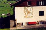 un coq de bruyère à Ortiséi