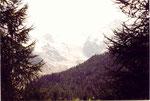 le glacier de Morteratsch