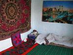 ma chambre à Arkhangel'skiy (ou Mikhaylovka?); va savoir ...