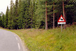 Danger: traversée d'élan!