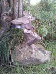 Hill of Tara, Irland - Wächter des EIN-KLANGS mit der Natur