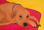 Dog_ Archibald © Pepponi Art