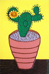 Nature & Flowers_ Cactus © Pepponi Art