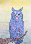 Owl_Proud Karl Heinz  © Pepponi Art