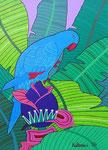 Birds_Bali_ Perrot © Pepponi Art