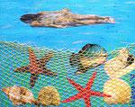 Collage_ Captured Sealife © Pepponi Art