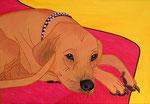 Special Order_ Dog_ Archibald @ Pepponi Art