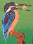 Birds_Kingfisher Bert © Pepponi Art